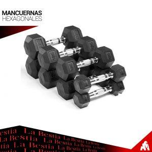 Mancuernas Hexagonales 30kg (Par)